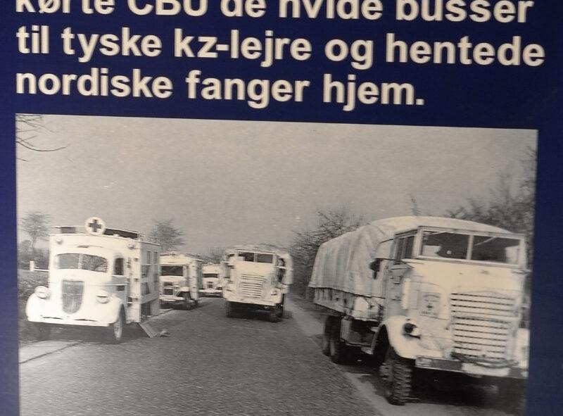 Fra udstillingen i Barak H1 - De hvide busser