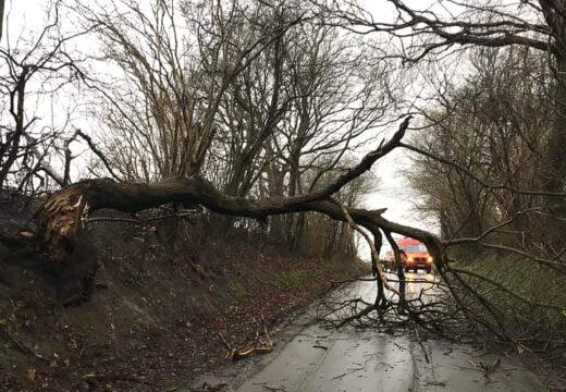 Også de frivillige fra Kolding (Trekantområdets Brandvæsen) havde nok at lave med oprydning under stormen 9. februar 2020. De kørte fra 11.30 til 02.30. (Foto: Marianne Kjær)